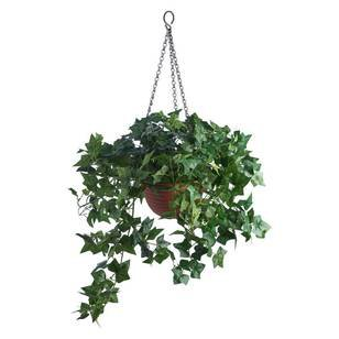 Artifical Plants + Flowers For Your Home - View Our Range Online