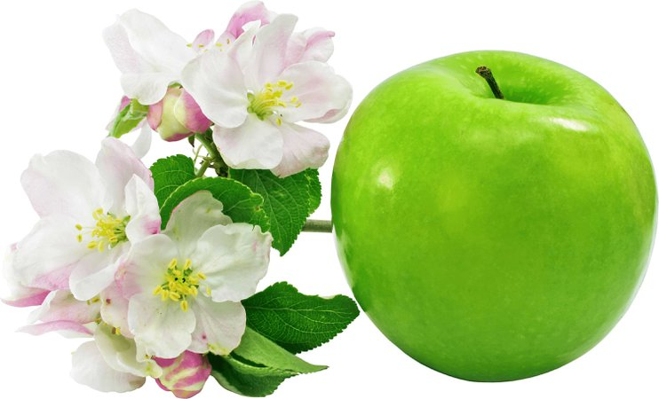 one green apple with flowers