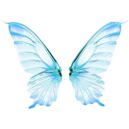 fairy wing png - Pesquisa Google
