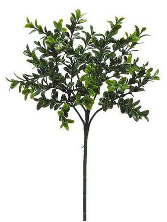 Green Boxwood Pick | Artificial Greenery & Plants | Afloral.com