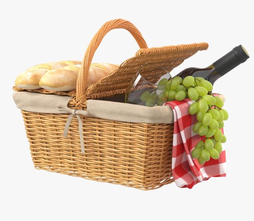 picnic basket gingham-google