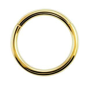 1PC G23 Titanium Hinged Segment Nose Ring Nipple Clicker Ear Cartilage – Rockin Docks Deluxephotos