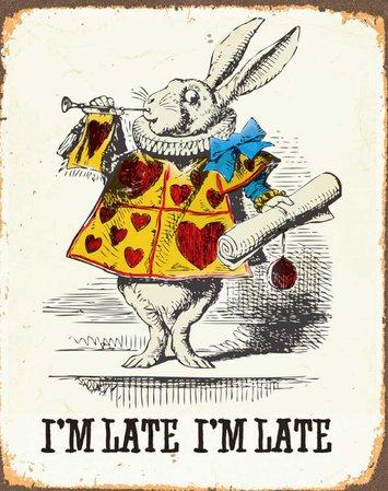 white rabbit (Alice in Wonderland)