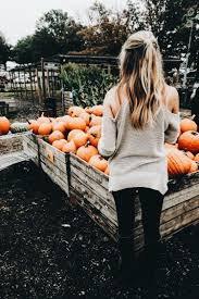 pumpkin patch pinterest - Google Search