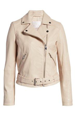Rachel Parcell Leather Moto Jacket (Nordstrom Exclusive) | Nordstrom