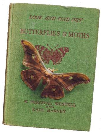 butterflies & moths book