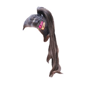 Brown hair ponytail clips png