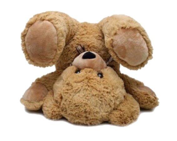 silly teddy