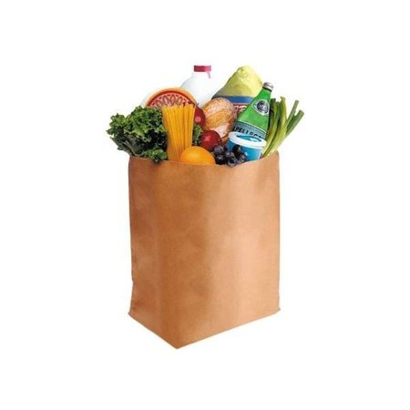 paper bag of groceries