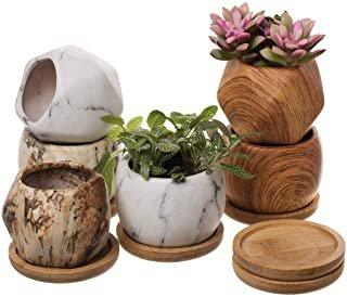 Amazon.com: plant pot