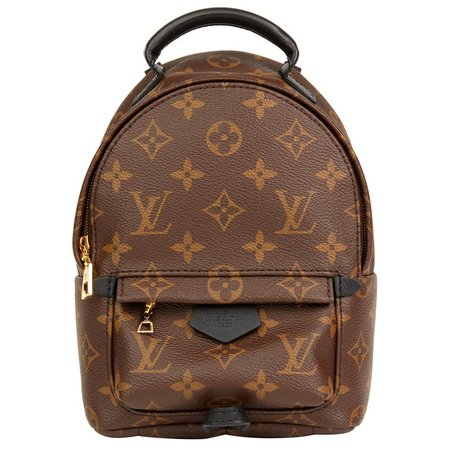 Louis Vuitton Brown Monogram Coated Canvas Mini Palm Springs Backpack For Sale at 1stdibs