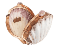 Shell compact png