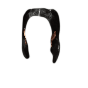 short black hair png