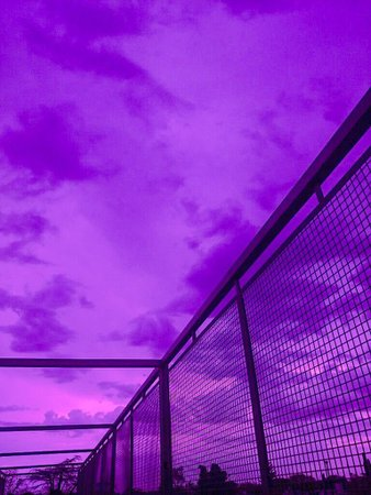 violet aesthetic - Google Search