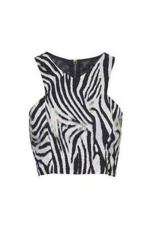 Crafter Zebra Print Crop Top With Metal Zip by Goldie