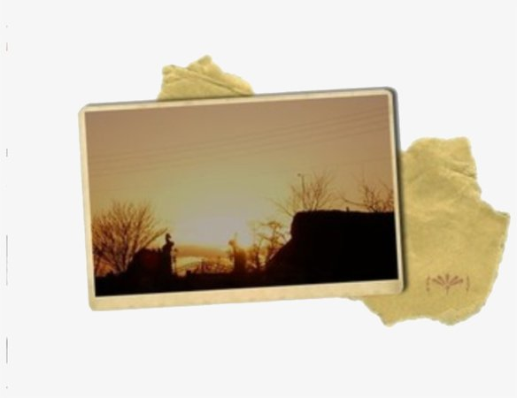 Yellow Brown Photo Polyvore Moodboard Filler Overlays, - Niche Meme Fillers Png - Free Transparent PNG Download - PNGkey