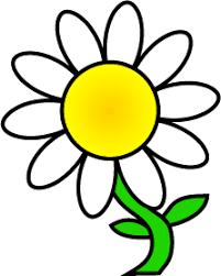 daisy - Google Search