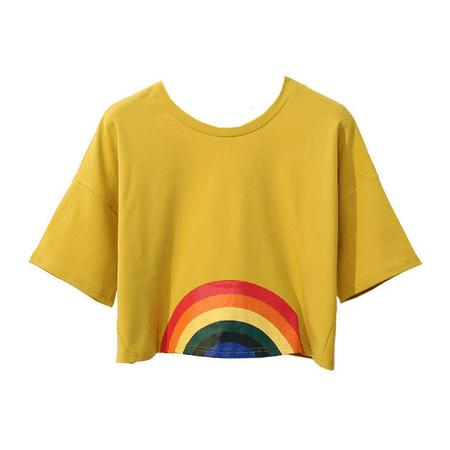 Cropped rainbow shirt