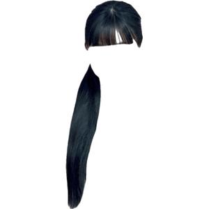 Side Ponytail Black Hair PNG