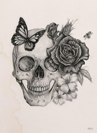 skull flower buttfly drawing - Google Search