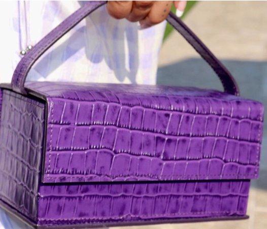 Beyoncé Crocodile bag