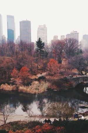 autumn city tumblr - Google Search