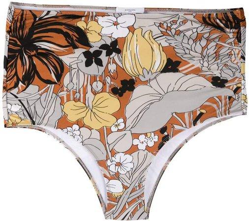 Botanique high-rise bikini briefs