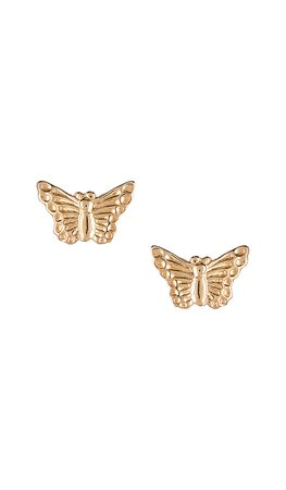 Natalie B Jewelry Butterfly Studs in Gold | REVOLVE