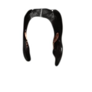 short black hair PNG pigtails