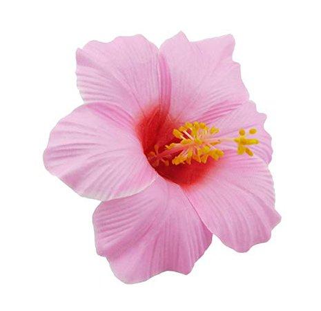 Amazon.com : Bonitagirl Hawaiian Hibiscus Flower Hair Clip (Pink) : Beauty
