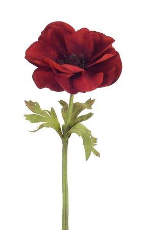 dark red flowers - Google Search