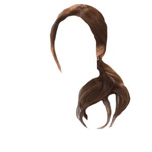 Brown Hair Low Ponytail PNG