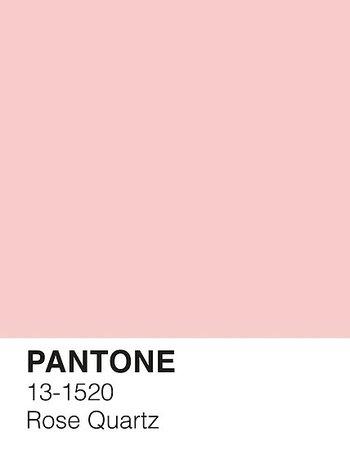 PANTONE ROSE