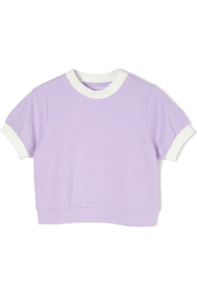 Lavender and White Crop Top