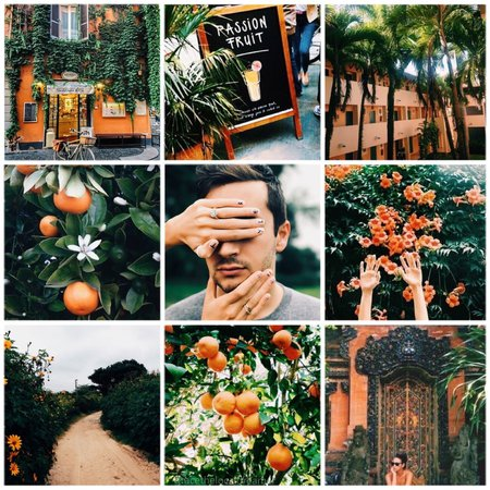 Grace's Aesthetics — Tyler Joseph x orange and green moodboard