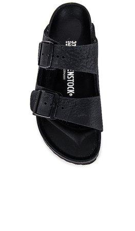 BIRKENSTOCK Arizona Exquisite Sandal in Black | REVOLVE