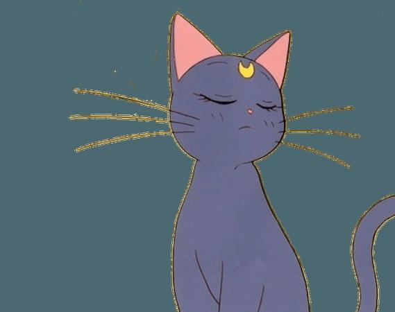 anime cat sailor moon luna