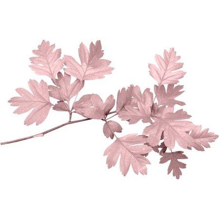 Pink Flower Filler