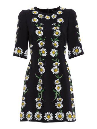 Dolce & Gabbana - Daisy print dress - Vestidos cortos - F6UI8T FPRK0 X0801