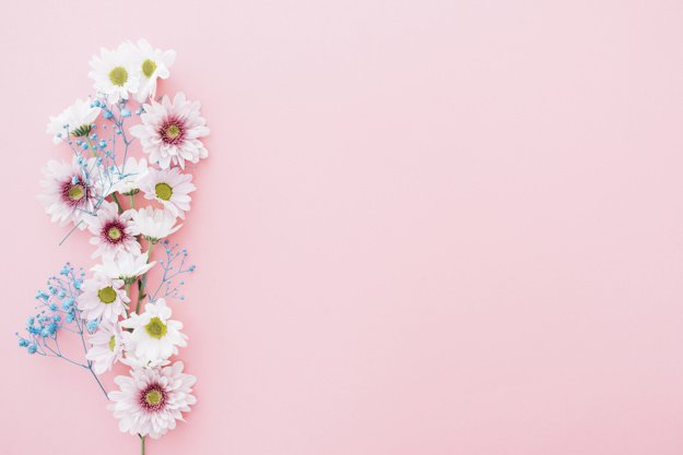Cute flowers on pink background with space on right Photo   Free Download