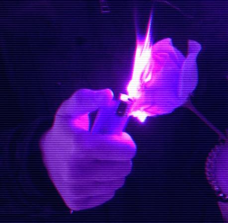 purple aesthetic | Tumblr | Purple | Purple aesthetic, Tumblr, Purple themes