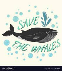 save the Whales - Google Search