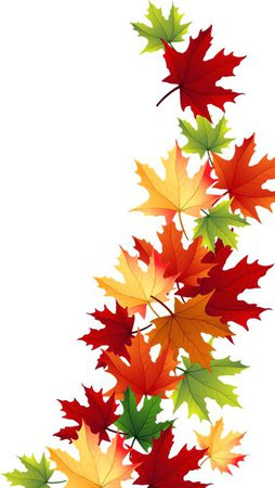 fall-leaves-clip-art-images-autumn-leaves-corner-border-autumn-leaves-clip-art-images.jpg (451×800)