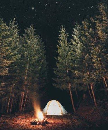 camping ⛺️
