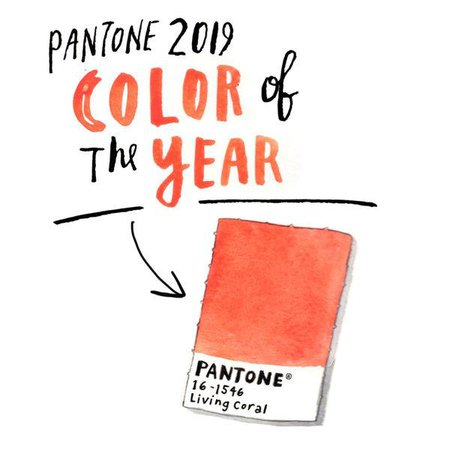 pantone coral words - Google Search