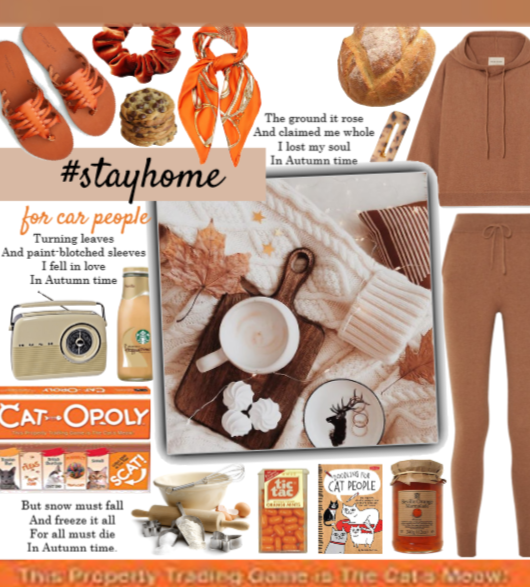 #stayhome for cat people