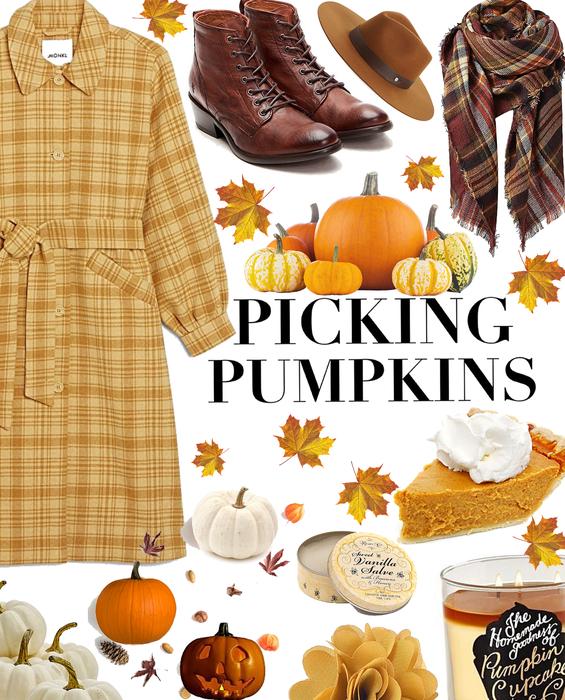 Pumpkin Picking: Pumpkin, Honey, Apple of My Eye