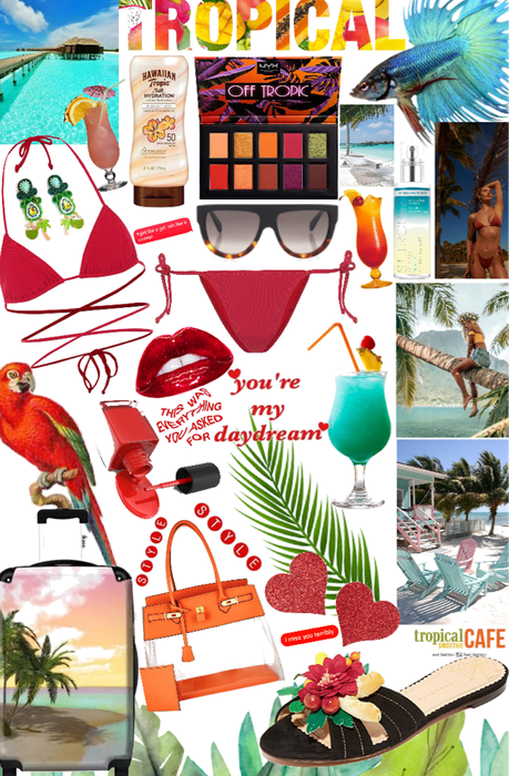tropical 🏝 life