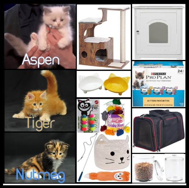 Items for Aspen, Tiger, & Nutmeg
