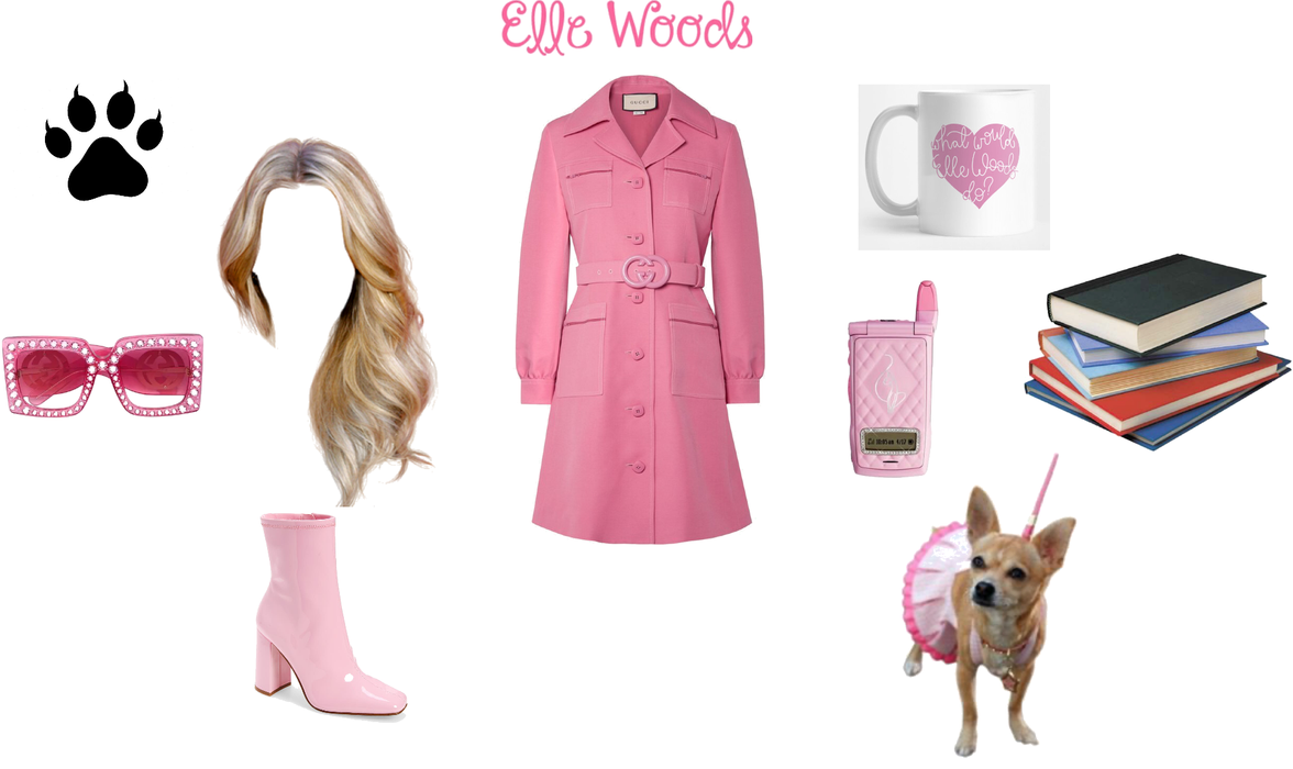 Elle woods from legally blonde